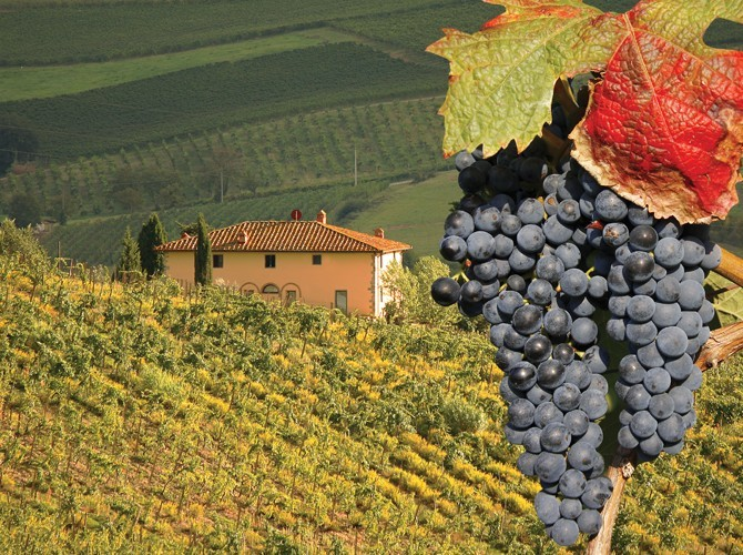 Brunello Wine Tour And Gregorian Chants